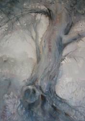 old tree by karincharlotte
