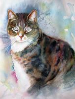 Davids cat 2 by karincharlotte