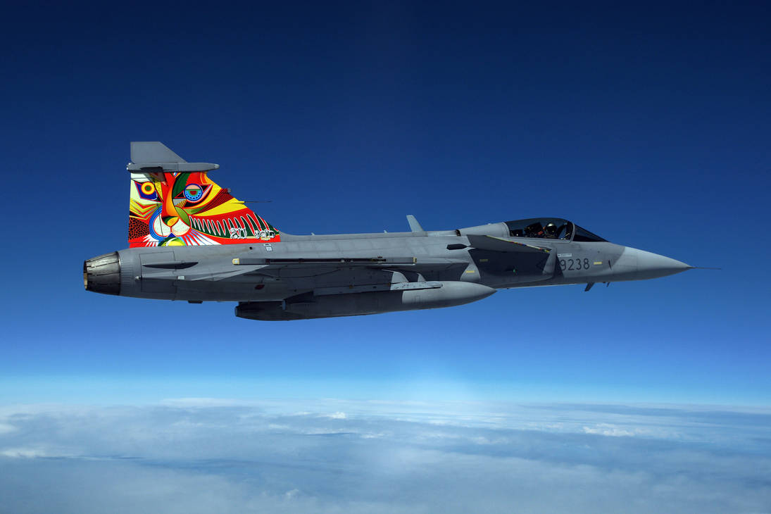 My Tiger on a fighter jet