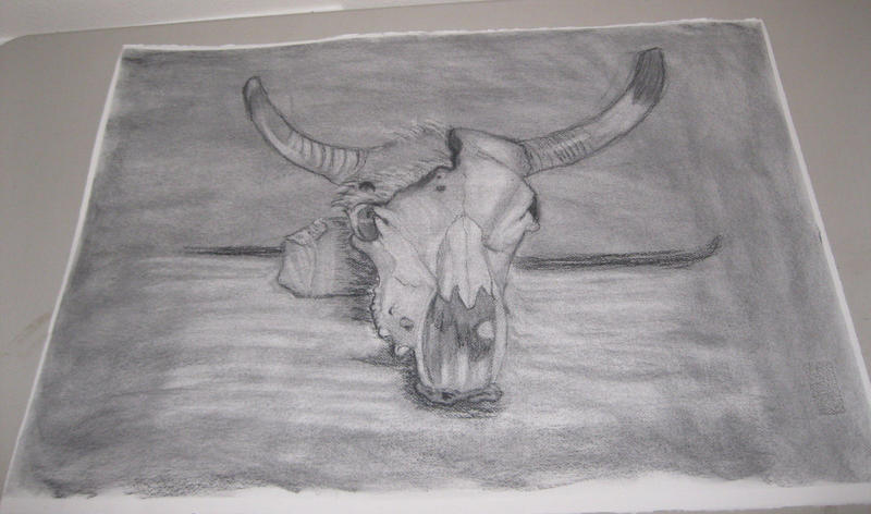 Skull Charcoal Drawing by ange-etrange