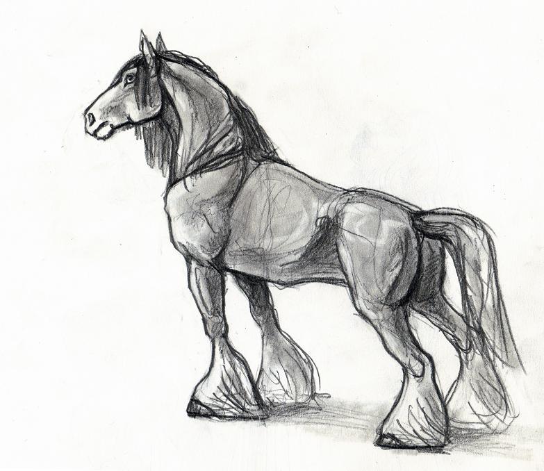 Quarter Horse Head Drawing Horse Drawings ...