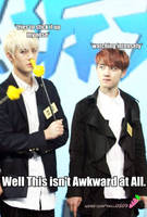 EXO_Isn't Awkward_MACRO by dancingdots