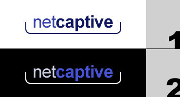 NetCaptive's Logo