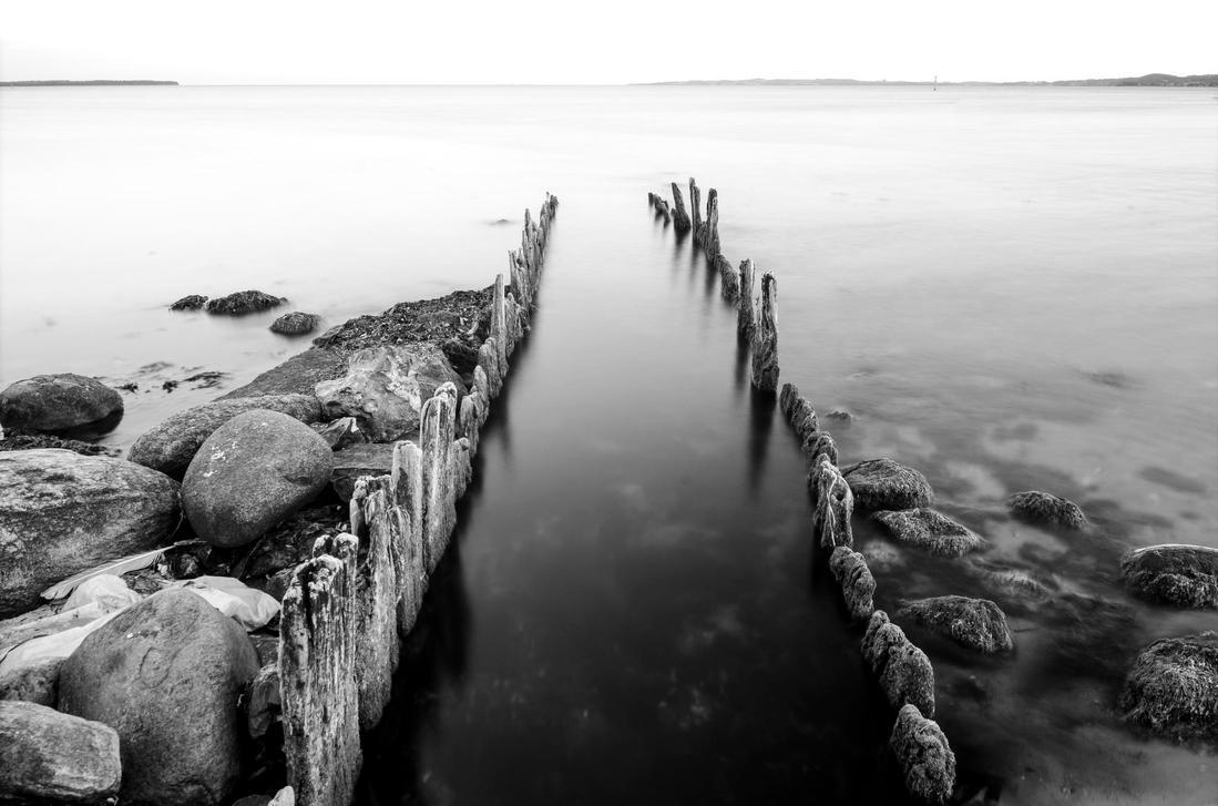 Black and White by Markuslajer