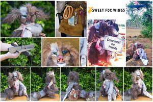 Sock Thief close ups by Sweet-Fox-Wings