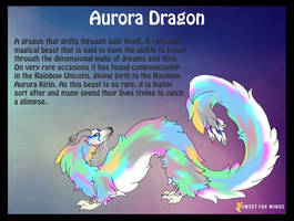 Aurora Dragon ref sheet by Sweet-Fox-Wings