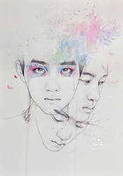 Water Lily - D.O.
