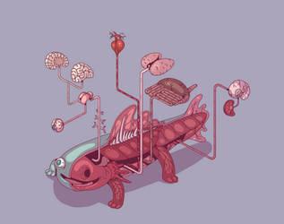 Anatomy of the weirdodon by ZooplanktonGarden