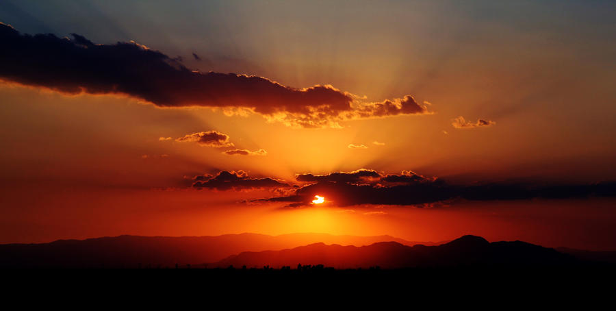 California Sunset by herygp