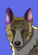 Dog headshot shaded by Dancingstones
