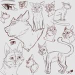 Cinder Sketches Bc Bored