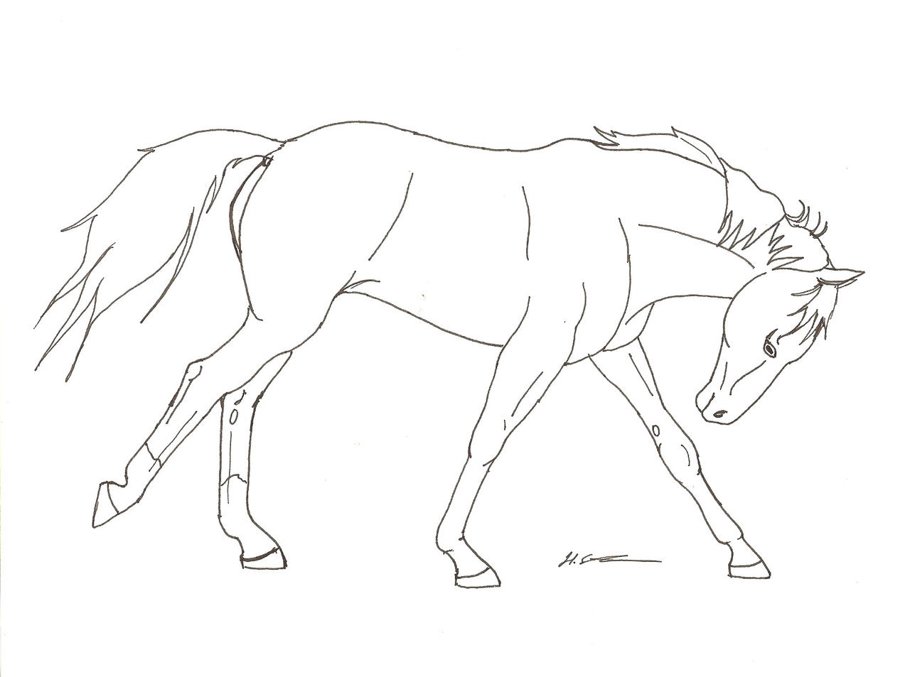 Line Art Horse : Running horse line art by hopelesslife on deviantart