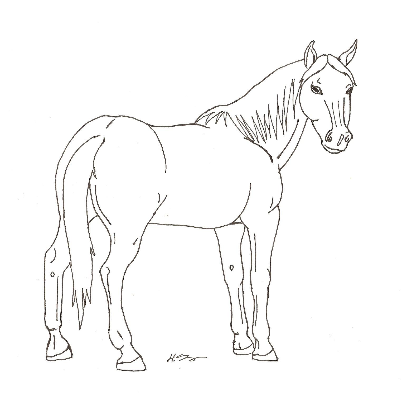 Line Drawing Horse : Standing horse line art by hopelesslife on deviantart