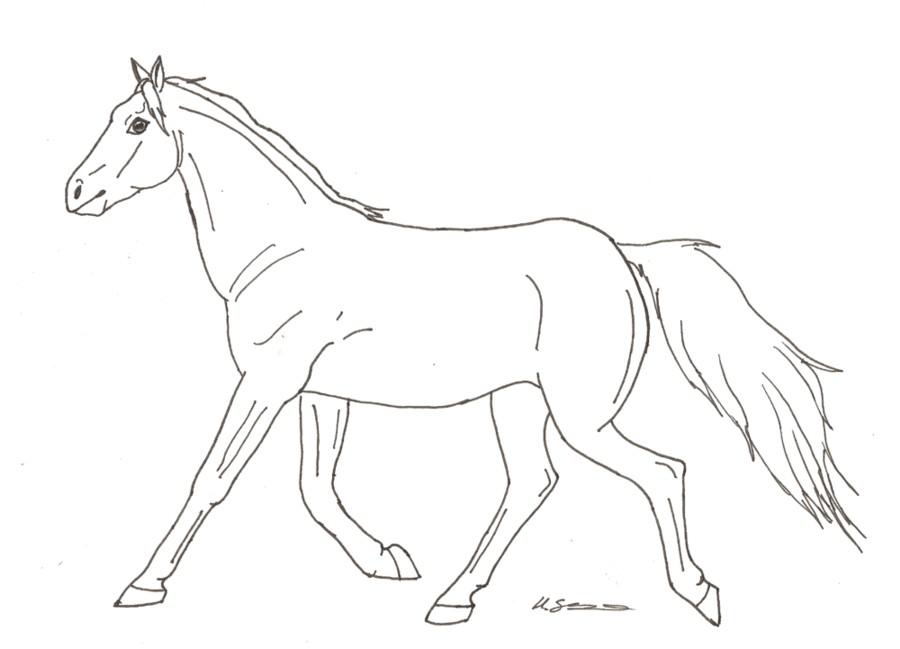 Line Drawing Of Horse : Trotting horse line art by hopelesslife on deviantart