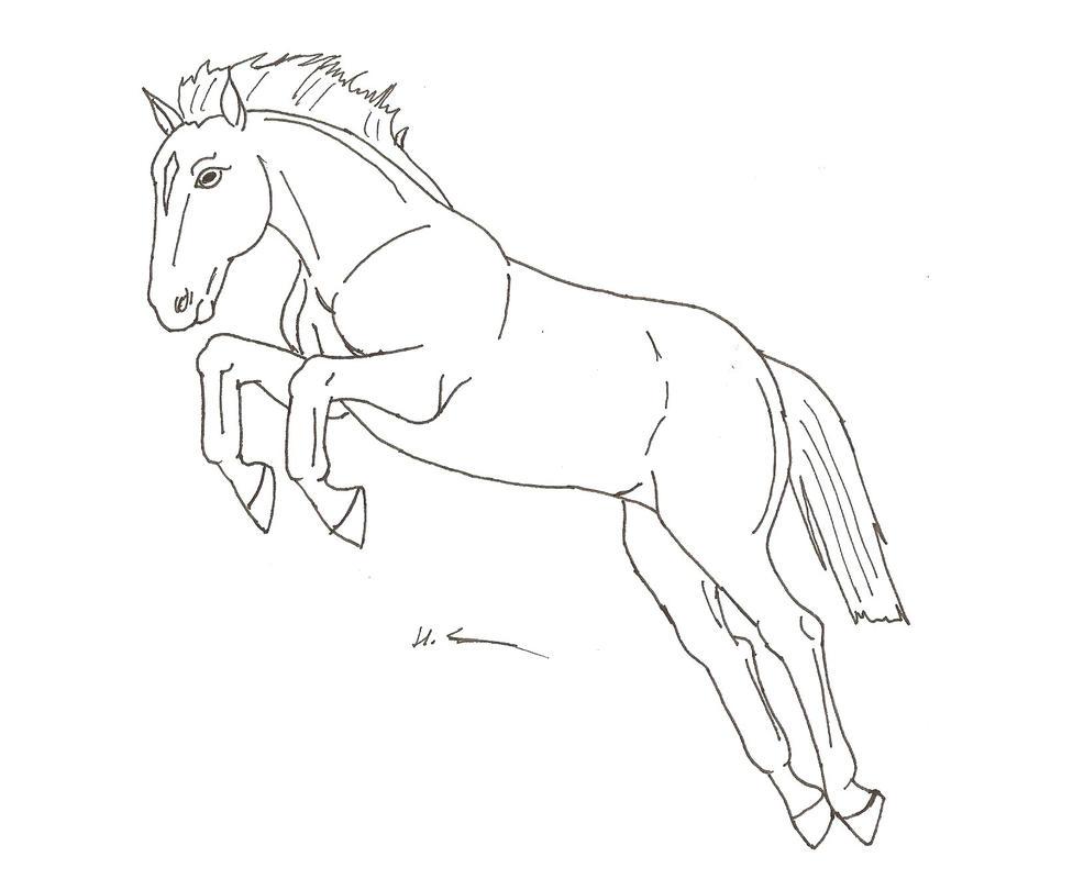 Horse jumping drawings