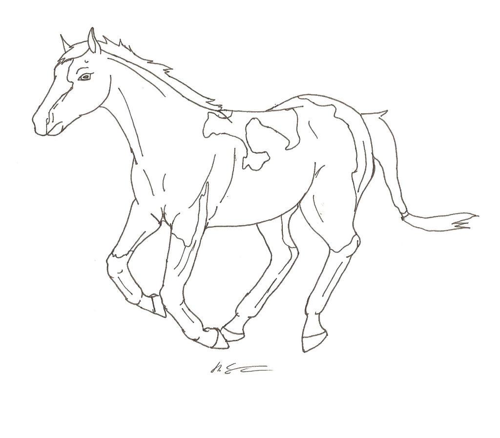 Line Drawing Net : Running paint horse line art by hopelesslife on deviantart