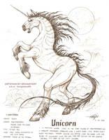unicorn by artstain