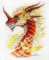 Fire Dragon Head - SALAMANDER