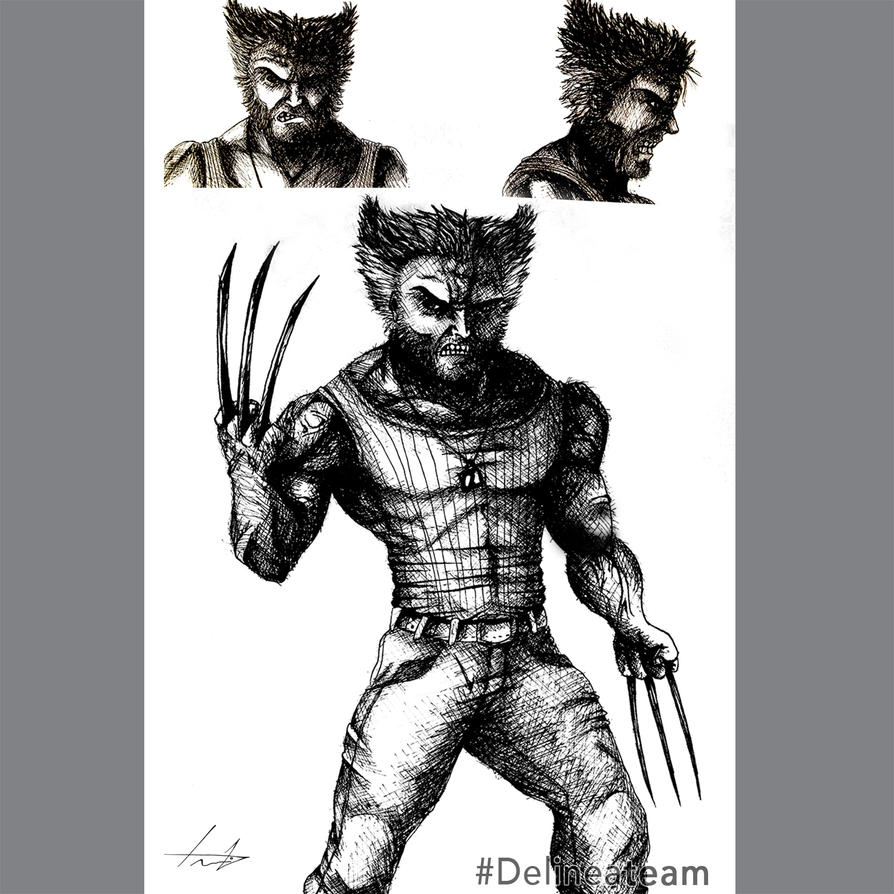 Nanquim Sketch Wolverine by LouizBrito