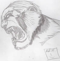 Sabertooth sketch pencils by Marvelzukas