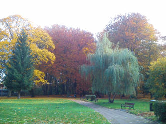 Colours of Autumn (2015)