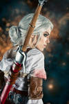 Ciri - The End - Witcher 3