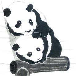 Panda 1 by vipmib