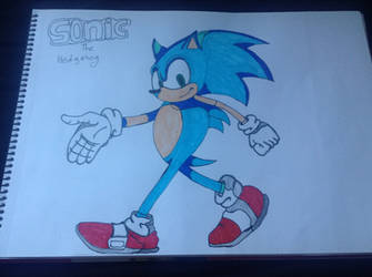 Sonic The Hedgehog by TrackmasterPrime