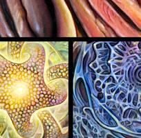 Thermodynamic Horizon: DETAILS