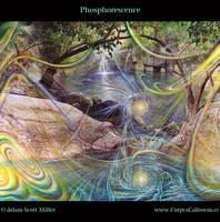 Phosphorescence by Adam-Scott-Miller