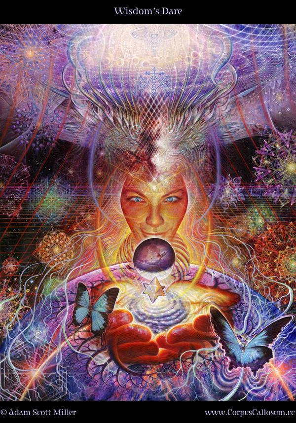 Wisdom's Dare by Adam-Scott-Miller