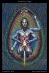 The Peacock Angel by Adam-Scott-Miller