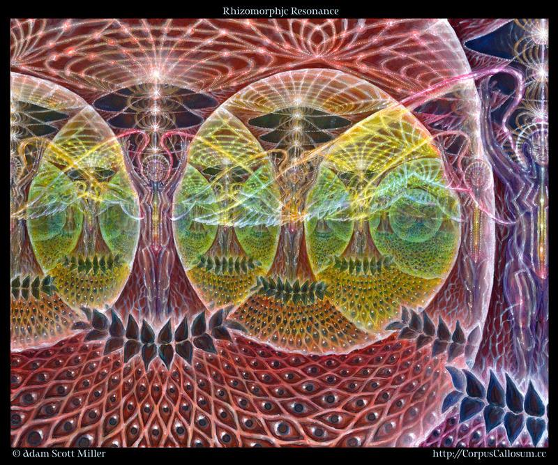 Rhizomorphic Resonance