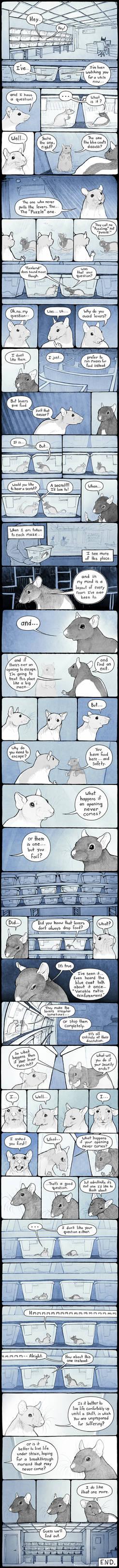 Puzzle Rat Comic