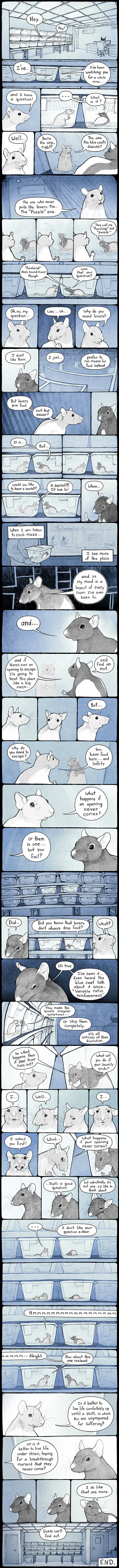 Puzzle Rat Comic by pengosolvent