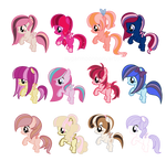 Filly adopts  CLOSED