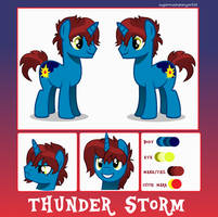 Commission for ThunderStormin by SugarMoonPonyArtist