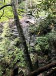 Bushkill Falls 65