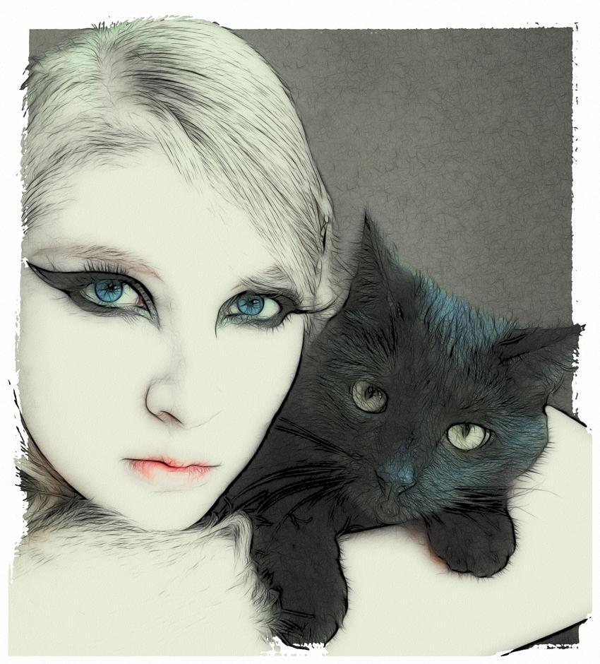 kitten for