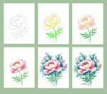Peony  watercolor tutorial by AnnaFromTheTrain