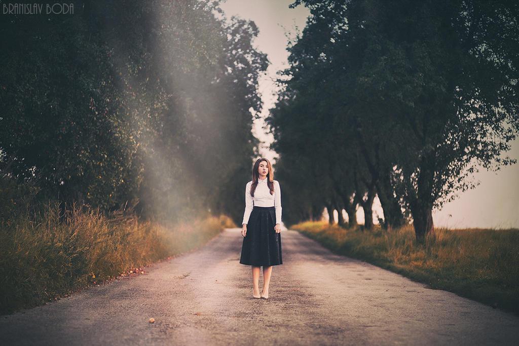 Treeline by branislavboda