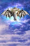 My flying skull