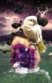 Amethyst Storm