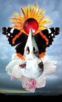 Angel Wish by DinowCookie