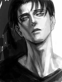 Attack on Titan- Levi x reader favourites by ...