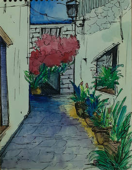Alley of Bougainvillea