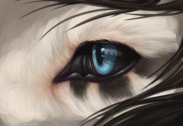 Eyebalb by KJfromColors