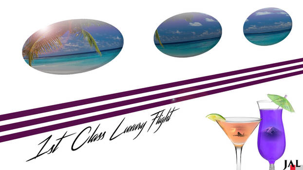 1st Class Luxury Flight
