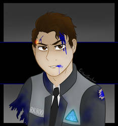 The RK800 by CipherSnail