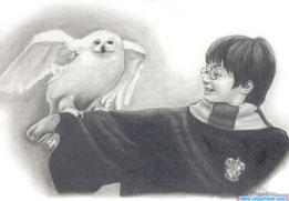 Harry And Hedwig by Clsportraits